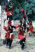 Dogon Dancers Mali