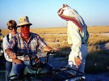 Kalahari Bike Ride With Ralph Bousfield
