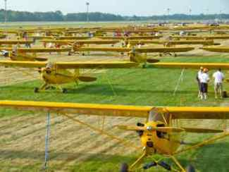 A field of Piper J3 Cubs in Oshkosh, WI