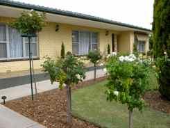 B-and-B in an Australian suburb