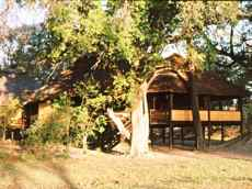 The original Camp Moremi dining lodge