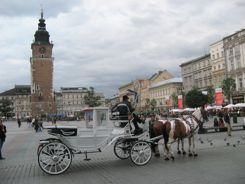 Krakow horse drawn carriage on Main Square