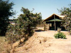 Safari Tented Camp - Kakuli Zambia