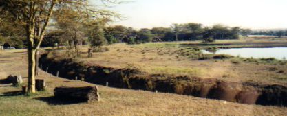 Water holes attract animals to African tented camps