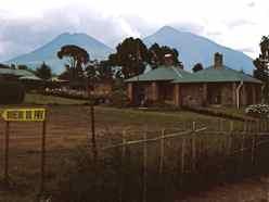 Volcanos National Park Rwanda