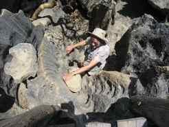Rock ladders - almost rock climbing Tsingy