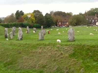 You share the Avebury Stone Circle with sheep