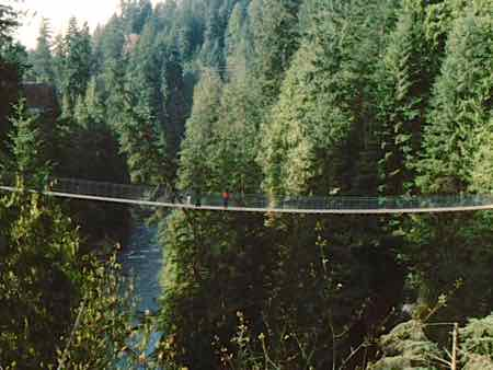 Capilano Suspensions Bridge... high above the river!