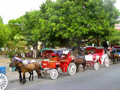 Carriages for a Granada city tour