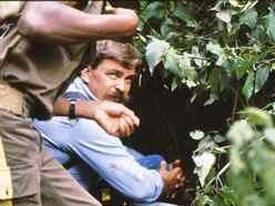 Crawling through rainforest in Rwanda to find gorillas