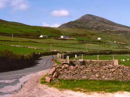 Rural Irish Road can be narrow with stone walls and hedgerows