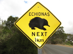 watch for echidnas - Australian roadsigns