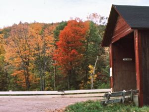 Fall Foliage and Covered Bridge