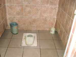 Foreign toilets - when you gotta go...