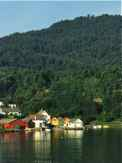 Ferry Approaches Houses on Hardangerfjord