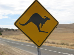 Australian road sign - watch for kangaroos