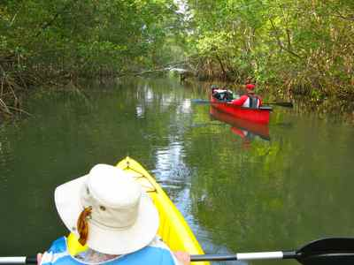 Kayaking Mangroves in El Salvador