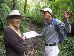Looking for quetzals in Panama at Volcan Baru
