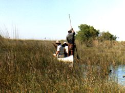 Makoro on the Okavango Delta a Botswana Adventure