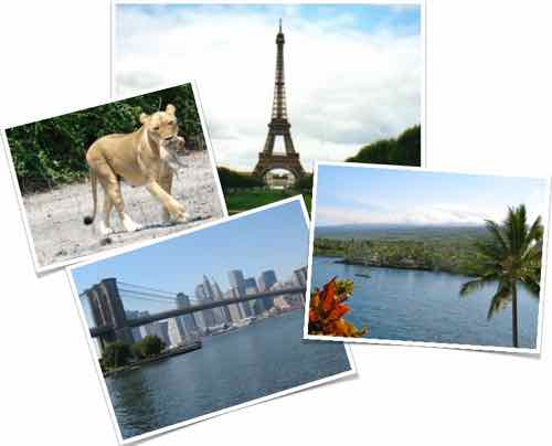 Paris, Africa, Hawaii, New York City Dream Trips for you