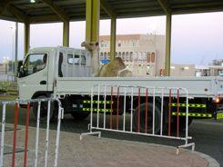 Oman-UAE Border Crossing - Stuck Behind a Camel