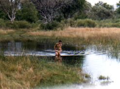 Ralph Bousfield tests the river Moremi Botswana