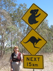 Aussie road sign for kangaroos and koalas