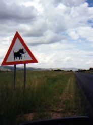 Warning sign warthog