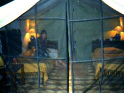 Tent interior Bandhavgahr NP India
