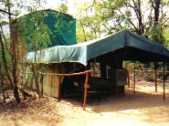 Two story tent in Panna National Park India