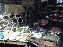 Herbs, llama fetuses -  Medicineman Bolivia