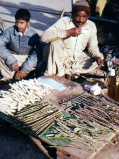Street vendors sell sticks for dental aids in Lahore Pakistan