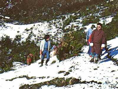 Trekking in Bhutan, snow took us by surprise