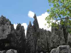 Climbing in the Tsingy in Madagascar