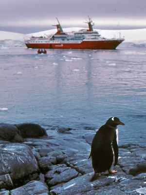 Antarctica cruise - see penguins
