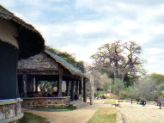 Tarangire Tented Camp dining room-lodge