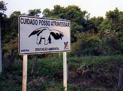 Information sign Pantanal Brazil