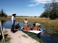 On our way to Camp Moremi by boat - in Okavango Delta