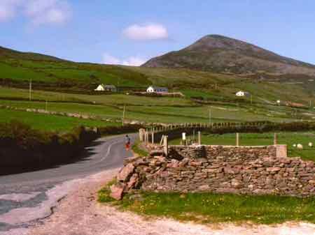 Narrow road of the Dingle Peninsula