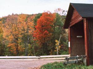 Fall Foliage and Covered Bridge