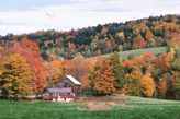 Fall foliage in shoulder season