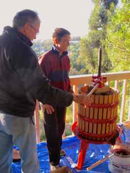 Helping with the little home wine press