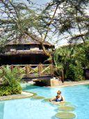 Pool at large tented camp Kenya
