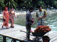 Dock at Sandakan Borneo Malaysia